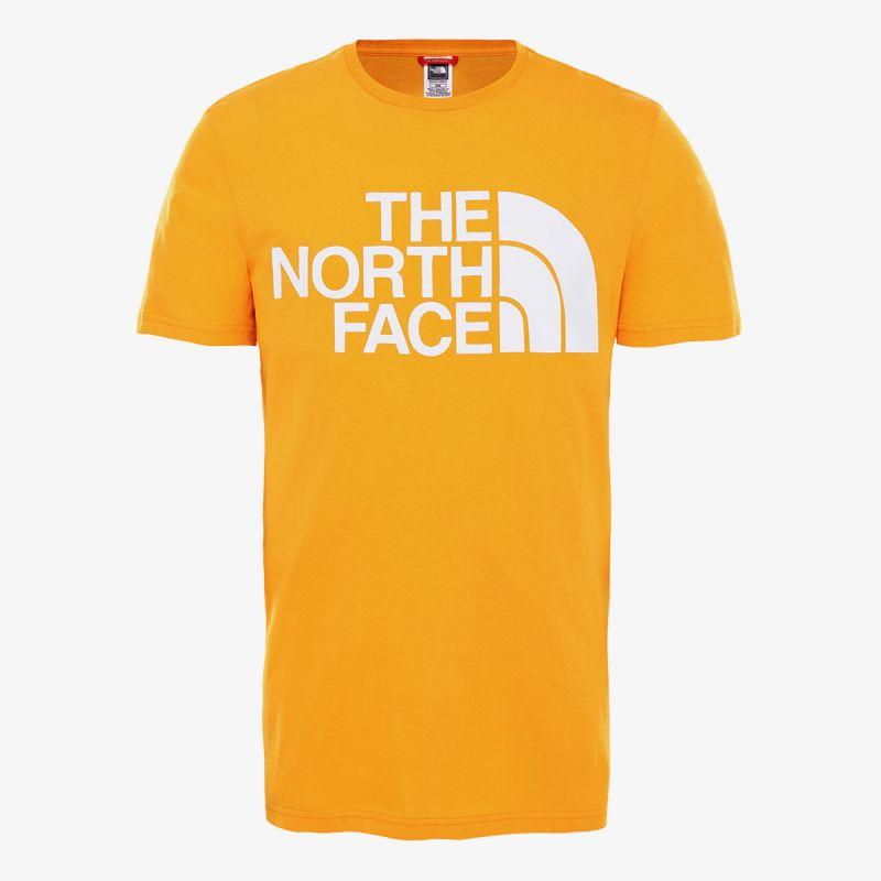 THE NORTH FACE M STANDARD SS TEE - EU
